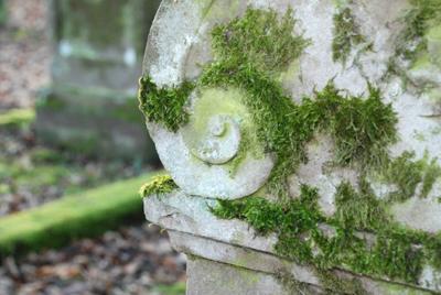 060108_niedenstein_judfriedhof-076_400pix.jpg