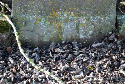 311207_meimbressen-jud-friedhof-035_400pix.jpg