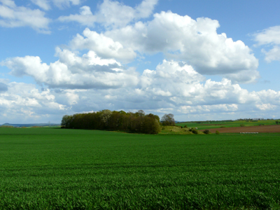 010508_landschaften_fz18-030_400pix.jpg