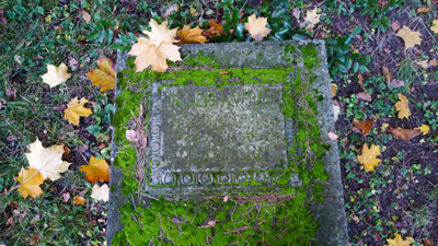 friedhof-am-park-kassel_81108_lx3-012_400.jpg