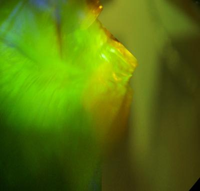 panoramabild-29_400.jpg