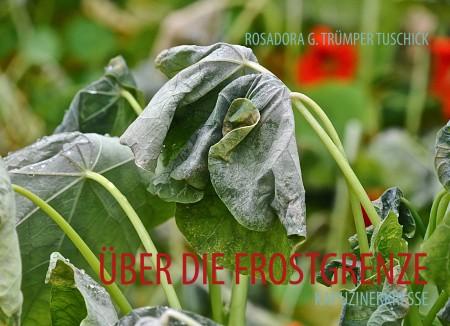 COVER FROSTGRENZE_