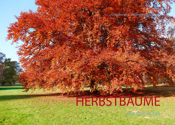 COVER HERBSTBÄUME_600__0011846593_Cover_U1_bearbeitet-1