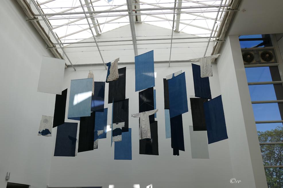 d14_blauer wäschehimmelP1590393_bearbeitet-1